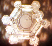 Water Crystals - Bach symphony