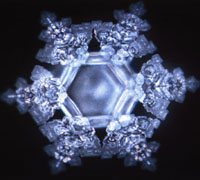 "Water Crystals - Words ""It is really beautiful"""